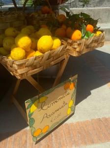 lemonsonpath