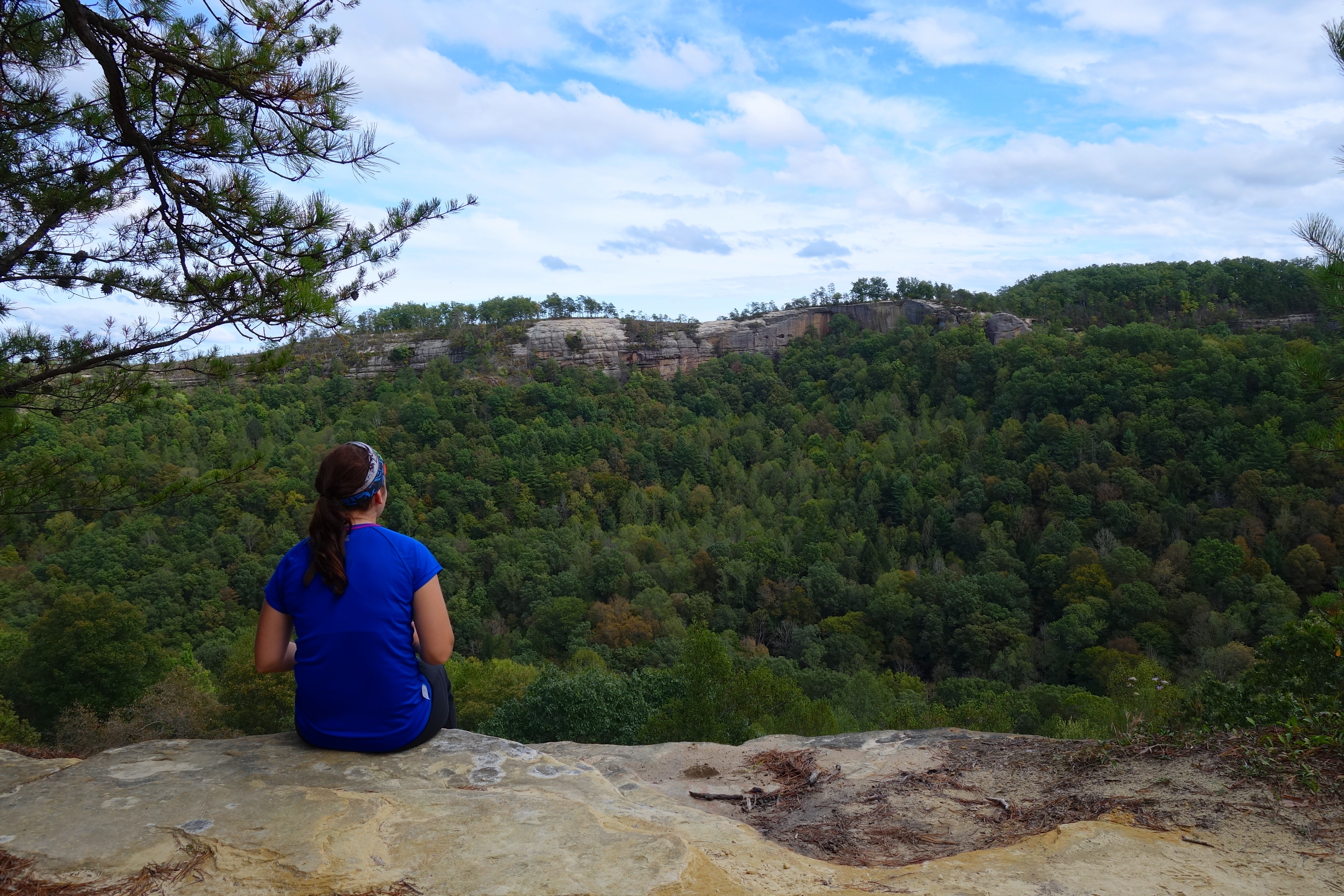 25  best ideas about Red river gorge on Pinterest | Kentucky ...
