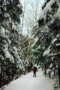 Winter Backpacking in Taquamenon Falls, MI
