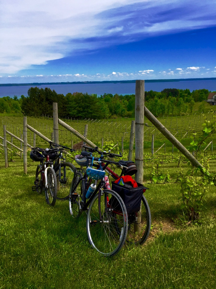 will bike for wine traverse city winery route hiker at. Black Bedroom Furniture Sets. Home Design Ideas